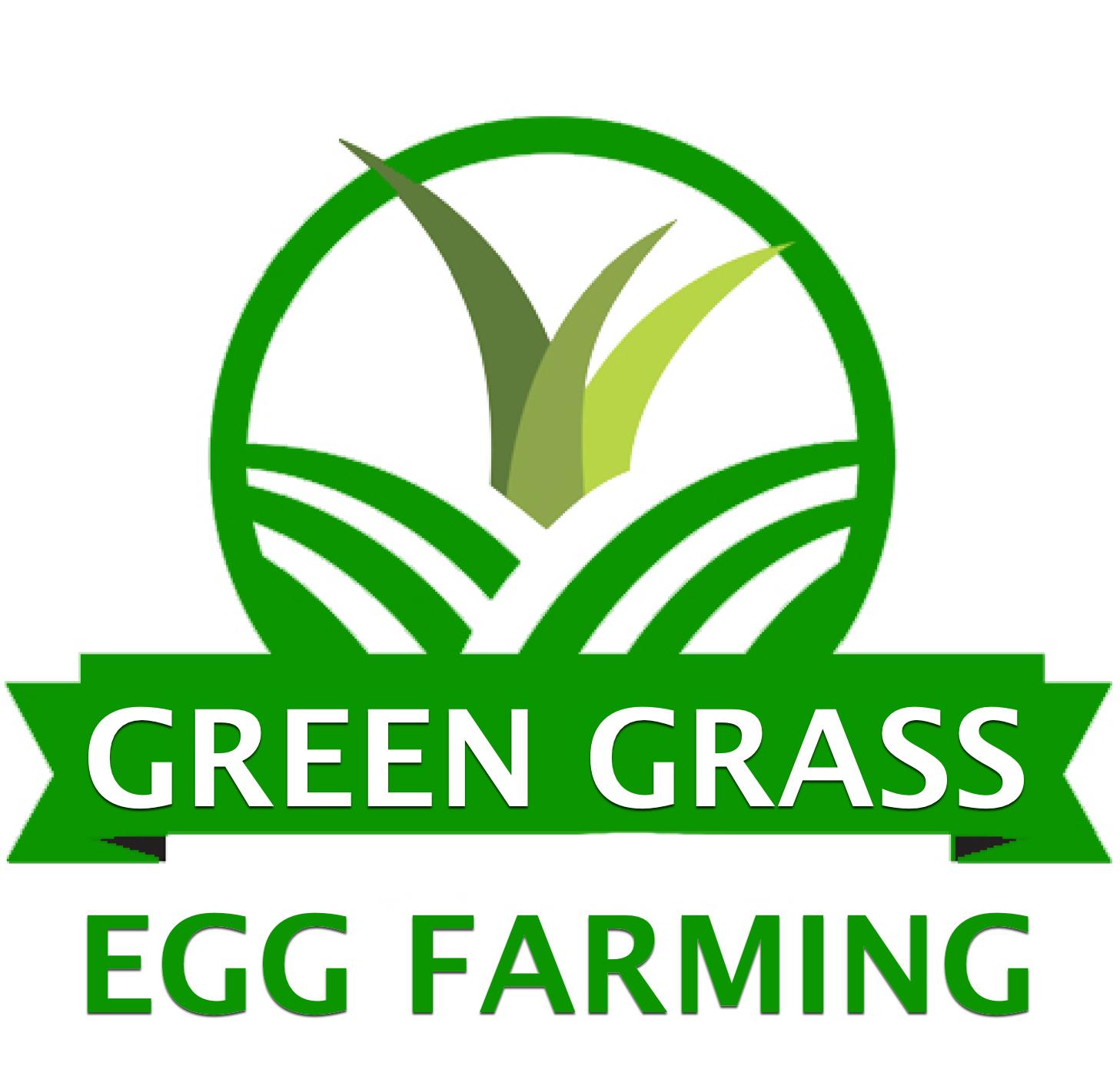 Green Grass Egg Farming